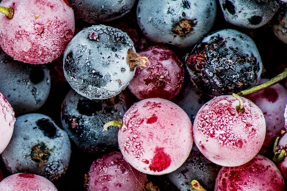 Acostúmbrese a la Fruta Congelada Image
