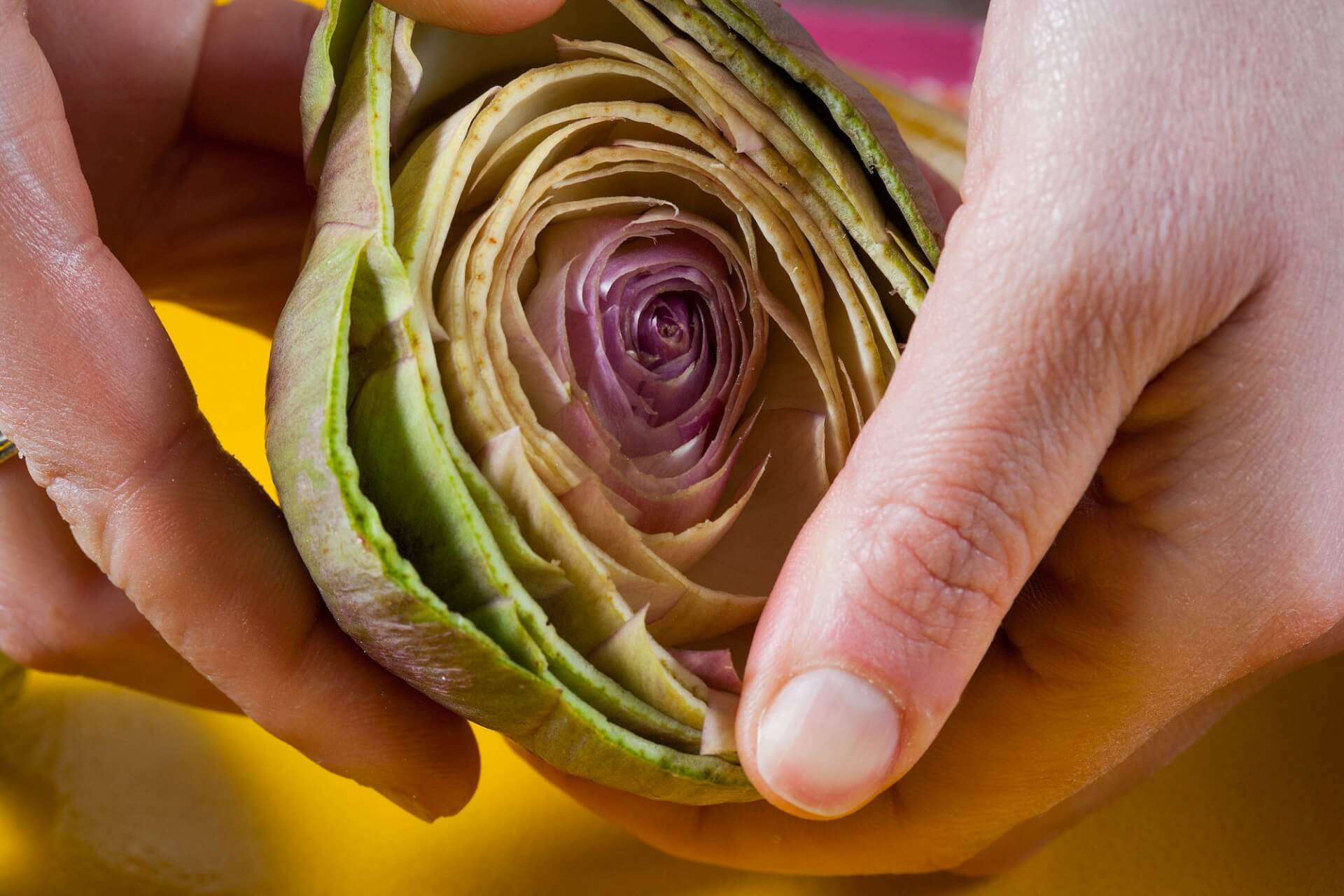 How to Cut an Artichoke Image