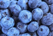 blueberry compote- cook for your life