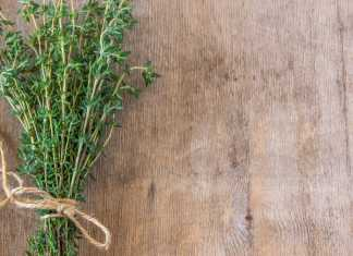 thyme - Cook for Your Life