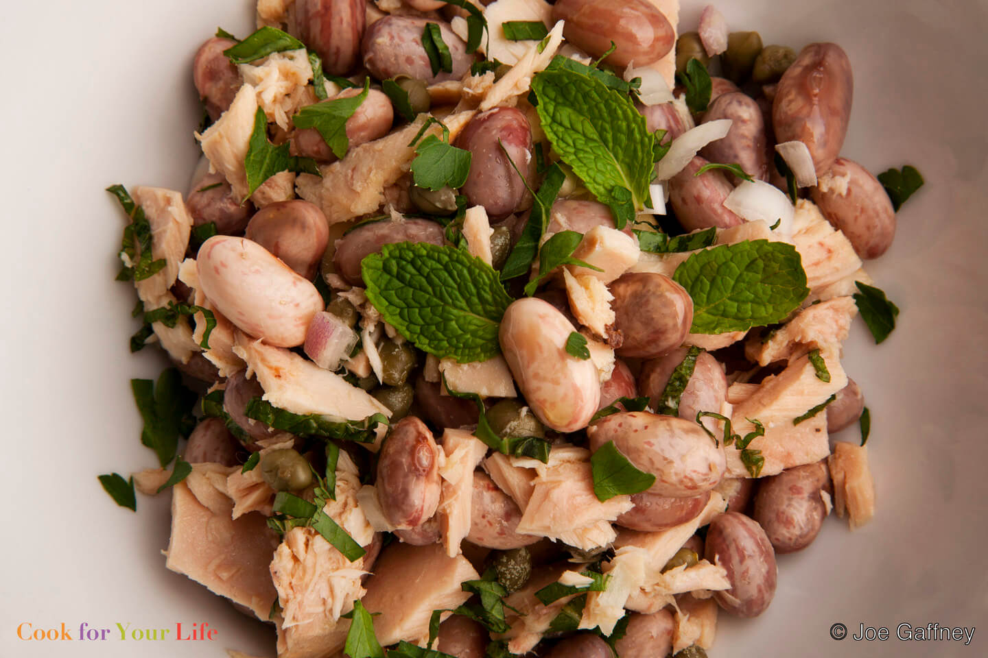 Quick and Easy Fresh Cranberry Bean & Tuna Salad Image