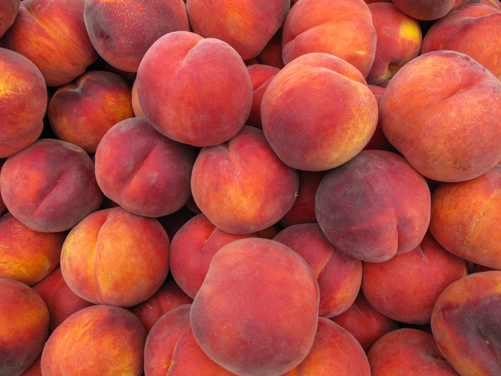 Peaches - just peachy - learn all about health benefits of peaches